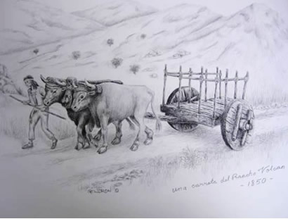 Ox Cart Drawing